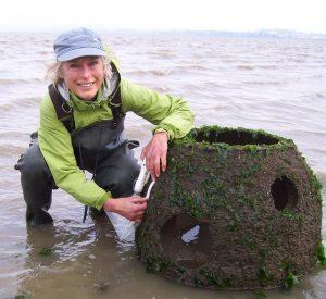 oyster citizen scientist