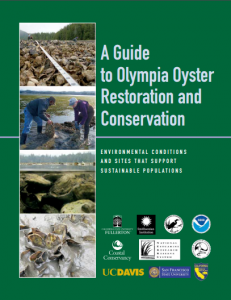 oympia oyster guide