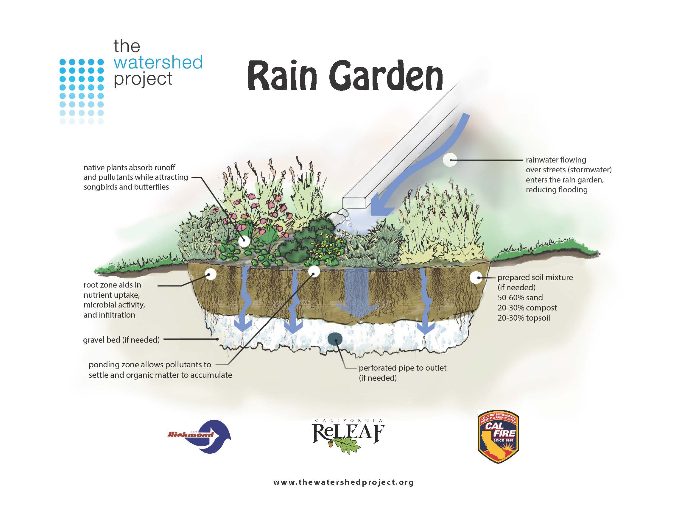 Rain Gardens Bioswales The Watershed Project