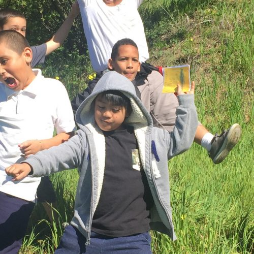 Watershed Education Wrap Up: An Action-Packed 20th Year