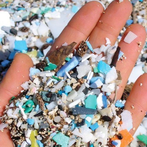 What's in Your Watershed: Microplastics