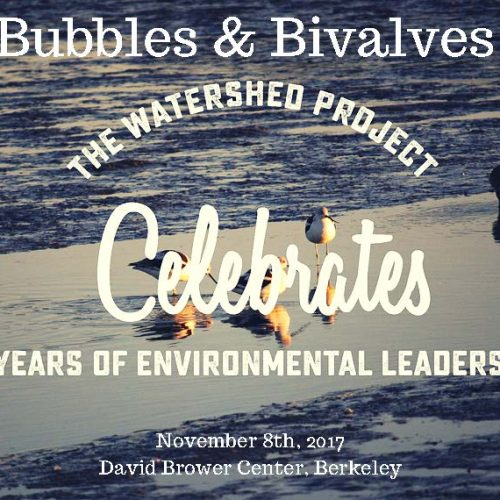 Bubbles & Bivalves: Celebrate 20 years on November 8th
