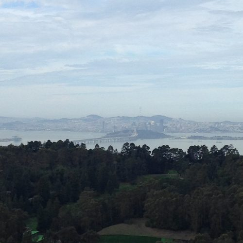 Enjoy the Bay: Favorite Hiking and Picnic Spots
